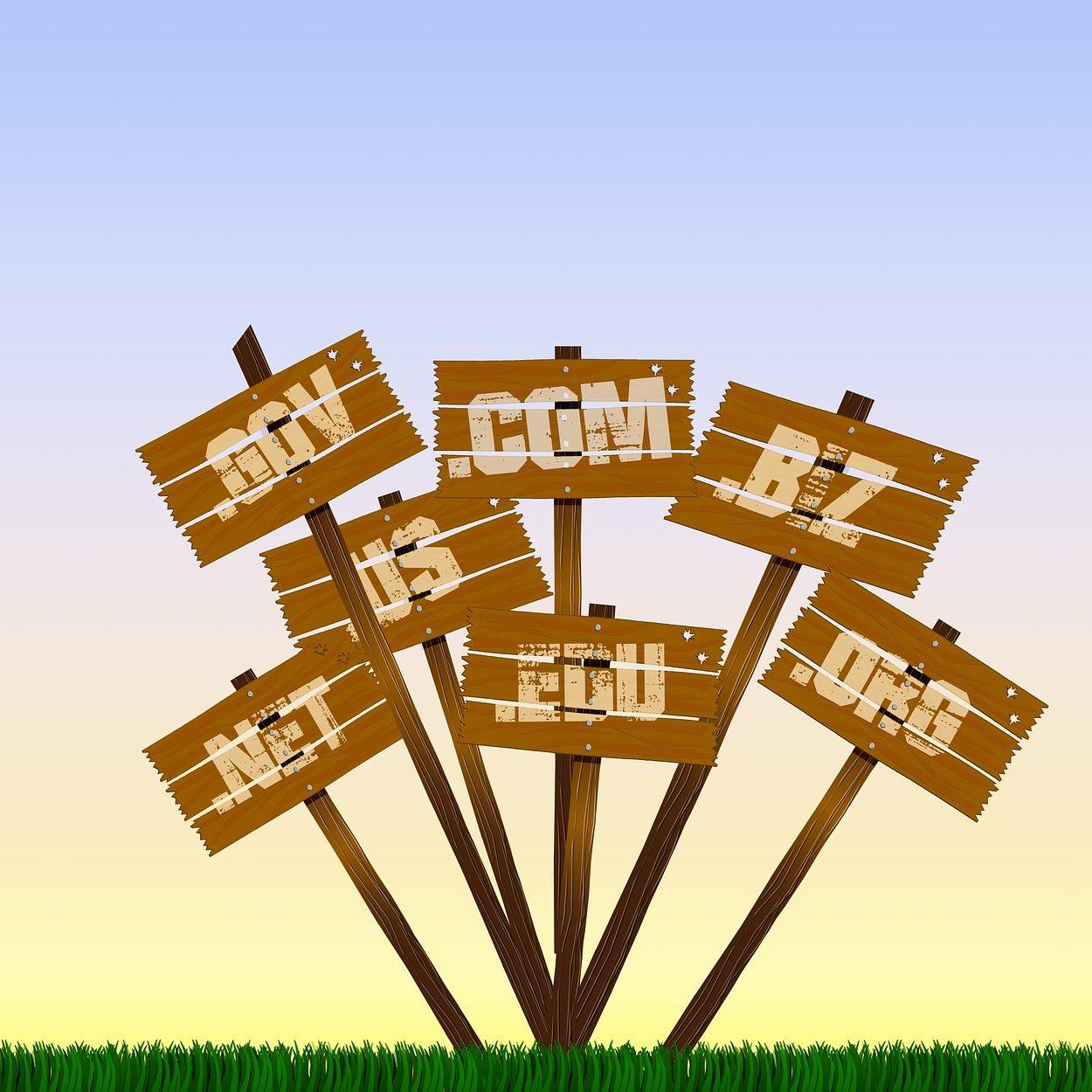 choosing-a-domain-name-talus-hosting